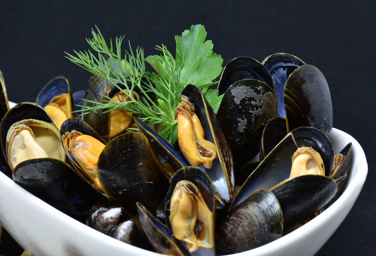 https://dvc-eksaarde.be/wp-content/uploads/2017/12/mussels-3148429_1280.jpg